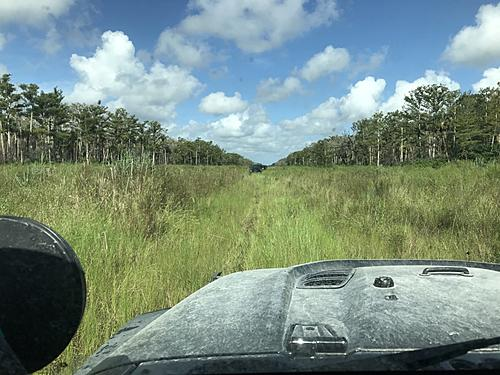 Black Sheep 4x4s State Forest Trail Ride 07.20.19-sf07201920.jpg