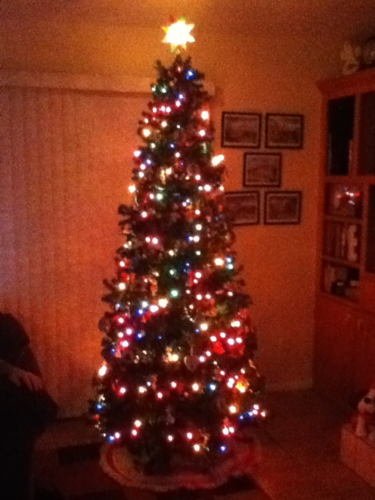 Holiday decorations :D-image-1860490469.png