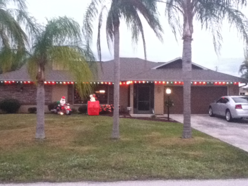 Holiday decorations :D-image-3247118352.png