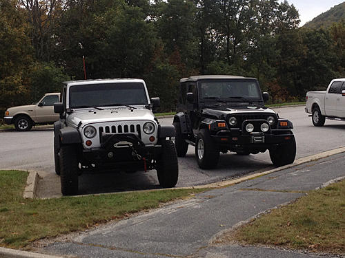 Jeeps parking next to other Jeeps-image-235304036.jpg