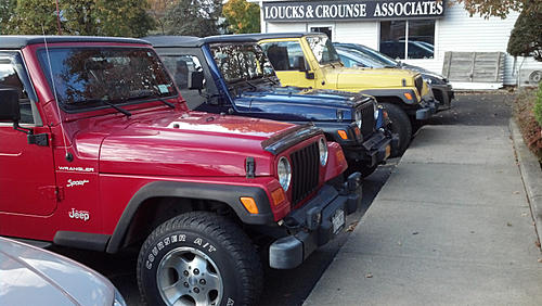Jeeps parking next to other Jeeps-image-3718318951.jpg