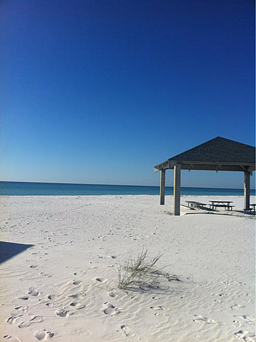 Gulf Breeze/Navarre-image-1830845709.jpg