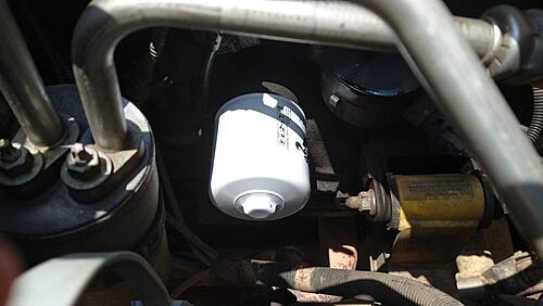 I like this new k&n oil filter-image-20-2-.jpeg