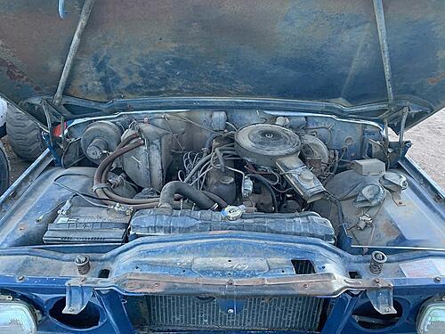 1979 Jeep Wagoneer-50801941672_4633f56b28_c.jpg
