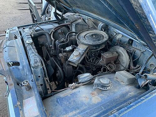 1979 Jeep Wagoneer-50801084023_53a589e196_c.jpg