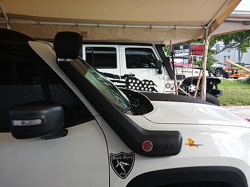 MrsSig's Jeep Renegade TrailHawk Build-rb06_222.jpg