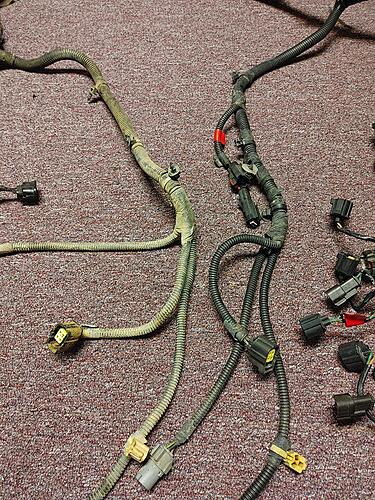What is the difference between 1999 and 2000 PCM harness-0220211847.jpg