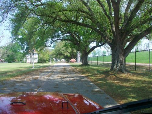 Cruising the Florida Parishes!-image-279083430.png