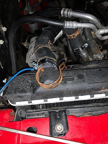 Radiator Bomb-img_9830.jpg