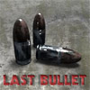 Last Bullet - 85,980 points (02-02-2010 02:34 PM)