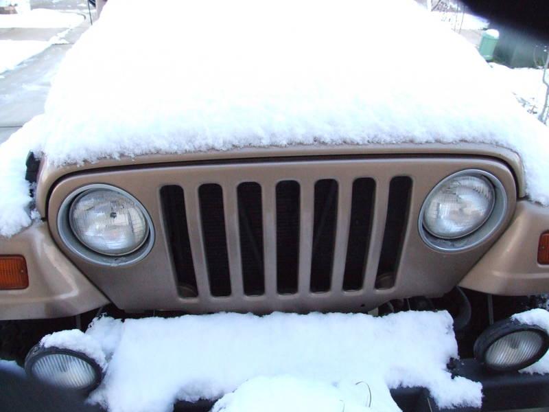 Snow in Texas?!?!